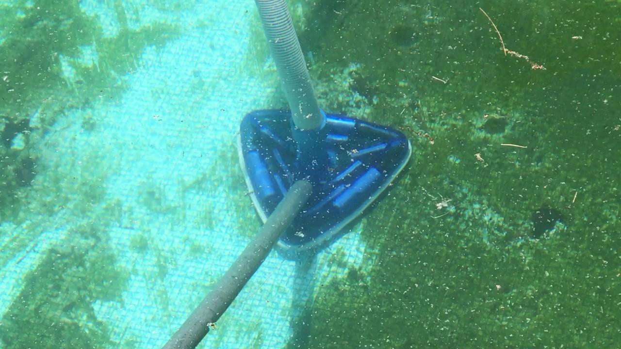 Pool Vacuum for Algae